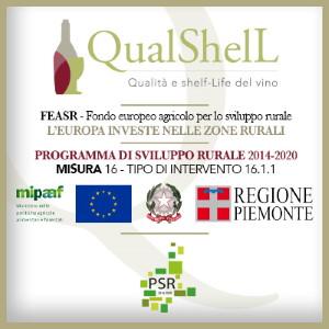 Qualshell logo